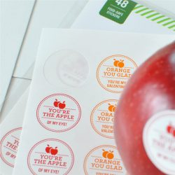 CCPPW040 fruit vegetable label (9)