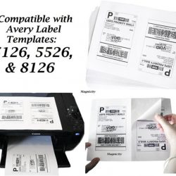 CCUSS050 8.5 x 11 US standard express shipping labels (2)